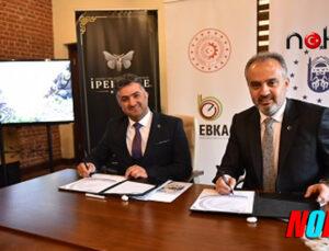 Bursa'da Bursa ipeğine can verecek yeni proje